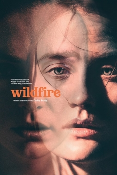 Poster Wildfire
