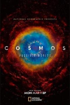 Poster Cosmos: Otros Mundos