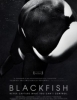 Blackfish (Amazon Prime)