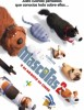 estreno  Mascotas 2