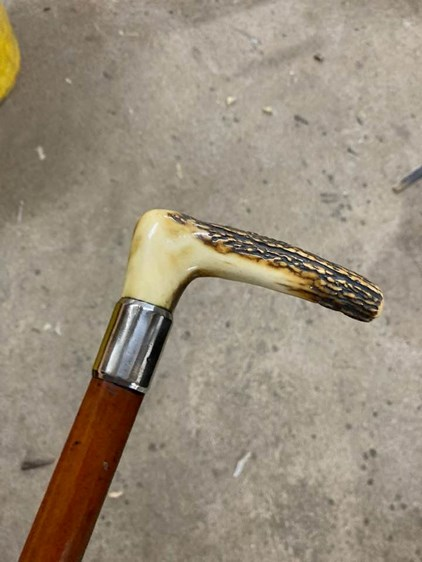 Antique Malacca Cane with Antler Handle | Antique Malacca Cane