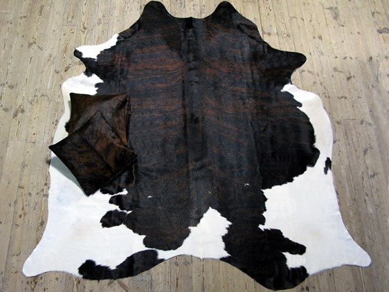 XL Cow Hide - Exotic