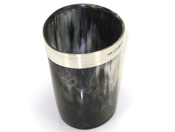 Pen Cup/Beaker - Silver Band