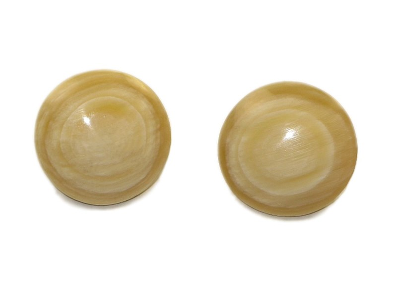 Horn Button Stud Earrings