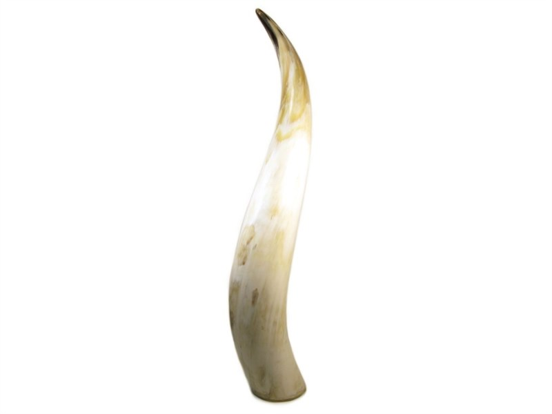 Polished Horn Ornament
