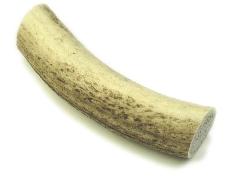 """Stag Antler Roll - 6"""""""