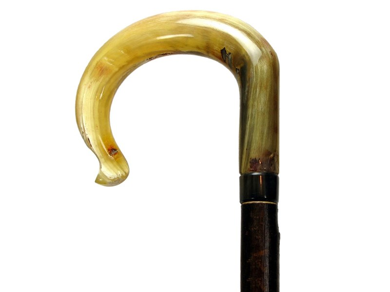 Traditional Crook Ramshorn Walking Stick