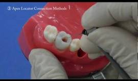 Thumb electrical root canal length measurement training model jaw how to use?1563274390