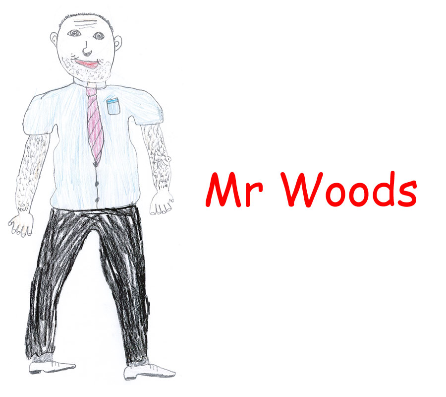 Image of Mr Woods Teacher Class 5 – Year 3 at Aberbargoed Primary School