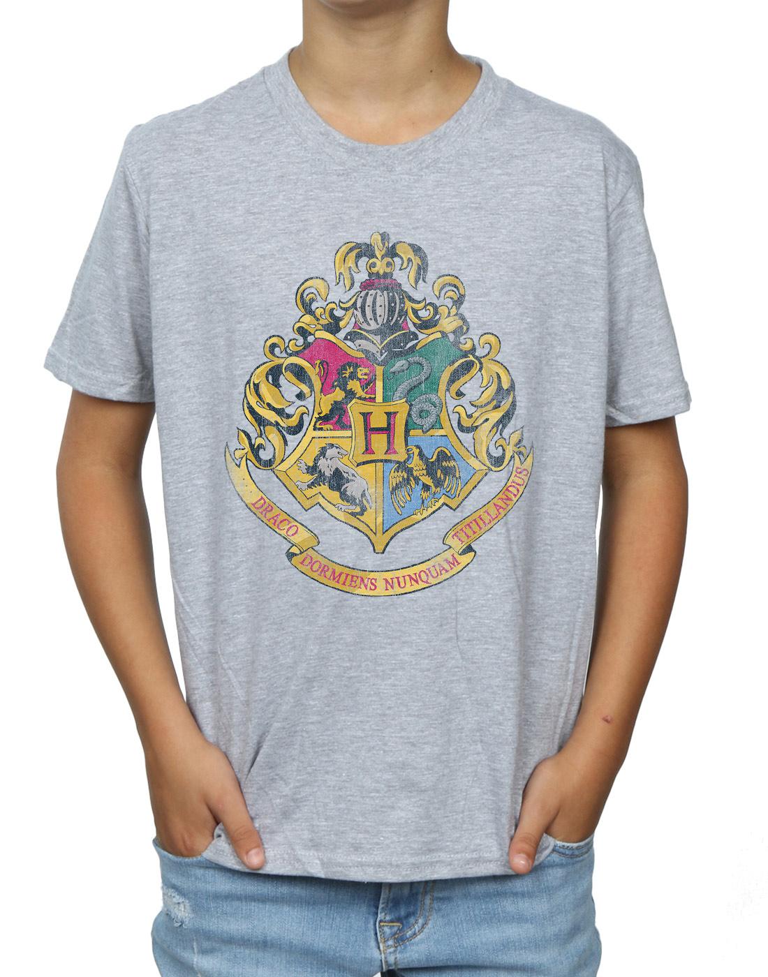 Harry Potter Boys Hogwarts Distressed Crest T-Shirt