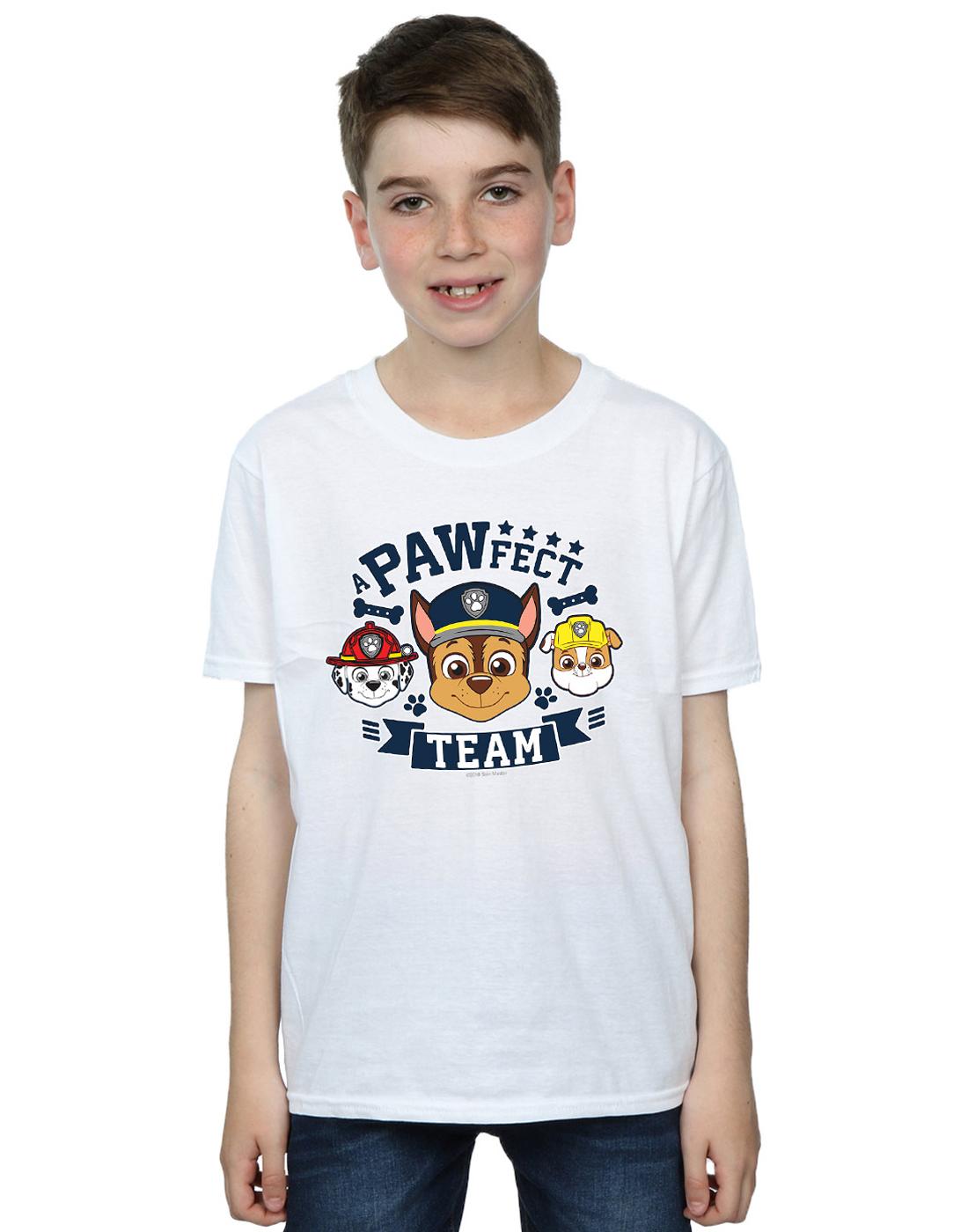 Paw-Patrol-Ninos-PAWfect-Team-Camiseta