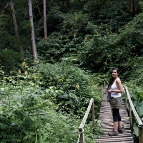 Pico do Refugio 44