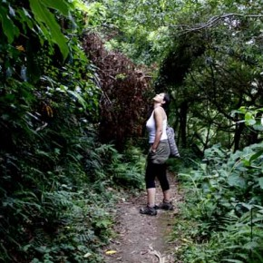 Pico do Refugio 43
