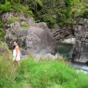 Pico do Refugio 39