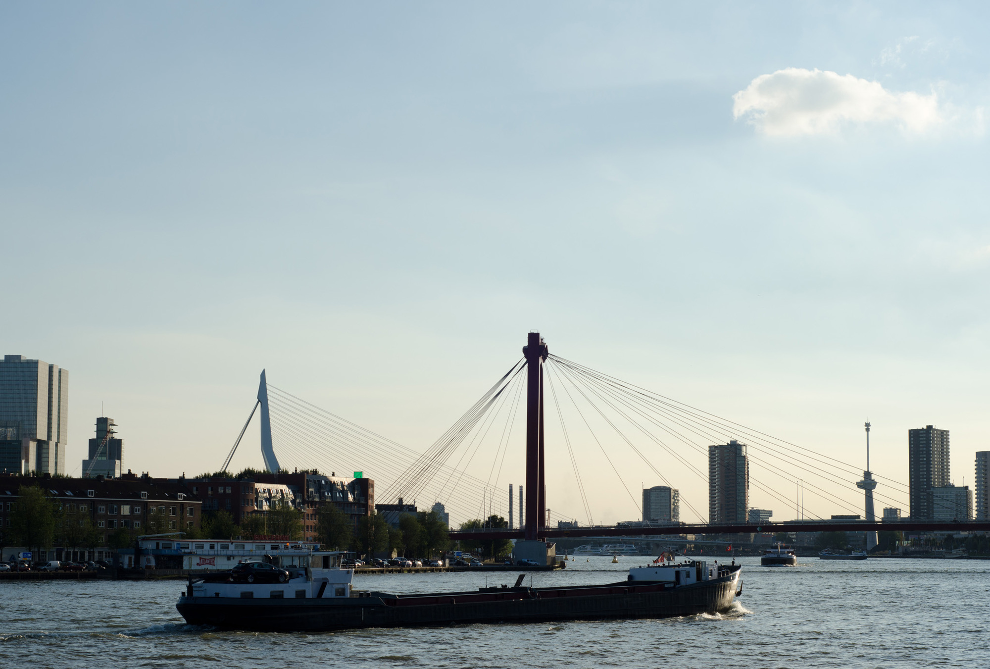 Citinerary Rotterdam Erasmusbrug