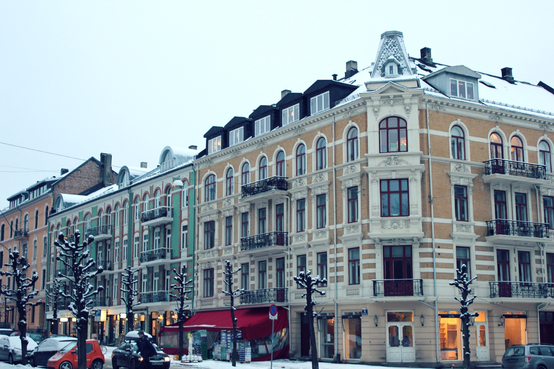 frogner snow day