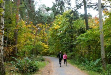 Wild Oslo: Hiking Bygdøy