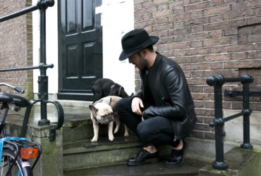 Rise of the Frenchies - Amsterdam's French Bulldogs