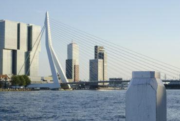 Rotterdam Erasmusbrug 20 years anniversary