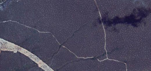 Une image couvrant près de 2 km de distance. Les nids de termites sont les minuscules taches dispersées dans le paysage - Crédit : Google Earth, SIO de données, NOAA, US Navy, NGA, GEBCO, IBCAO Landsat et Copernicus US Geological Survey.