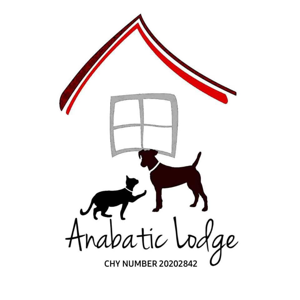 Anabatic Lodge Animal Rescue
