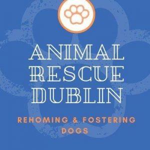 Animal Rescue Dublin
