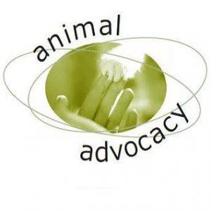 Animal Advocacy