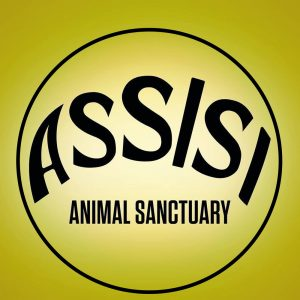 Assisi Animal Sanctuary