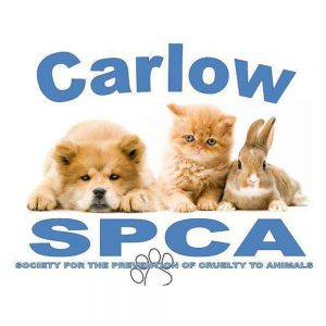 Carlow SPCA