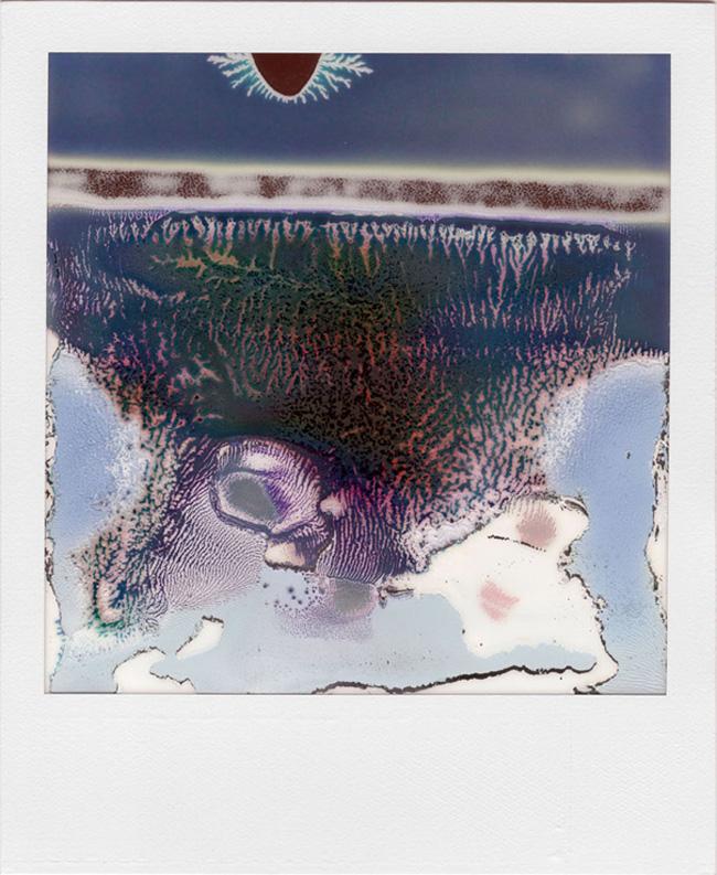 LTVs, Ruined Polaroid, William Miller, Lancia TrendVisions