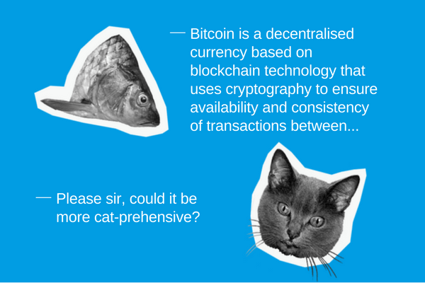 This bitcoin explanation is so simple, even a cat would understand