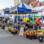 Lymington Market every Saturday