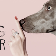 Dog fever - wear your dog on your finger!