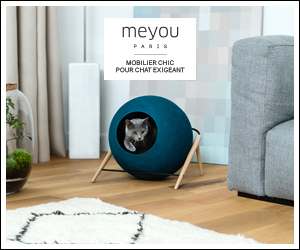 meyou pourquoi le mobilier pour chats devrait forc ment tre moche. Black Bedroom Furniture Sets. Home Design Ideas