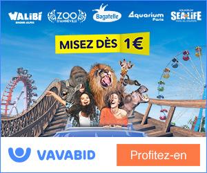 Enchères billets Parc d'Attraction Disneyland Paris