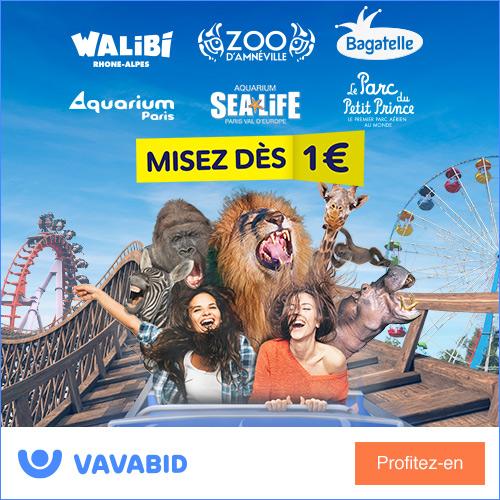Enchères billets Disneyland Paris