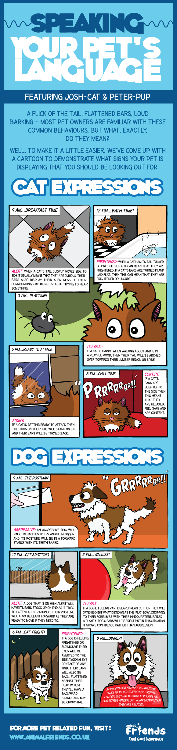 Speak Your Pets Infographic