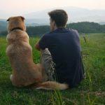 dog and man sitting