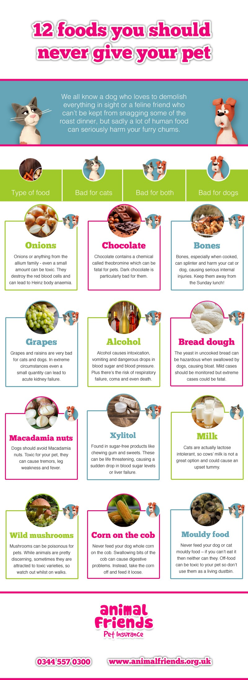 Foods Your Cat Should Never Eat