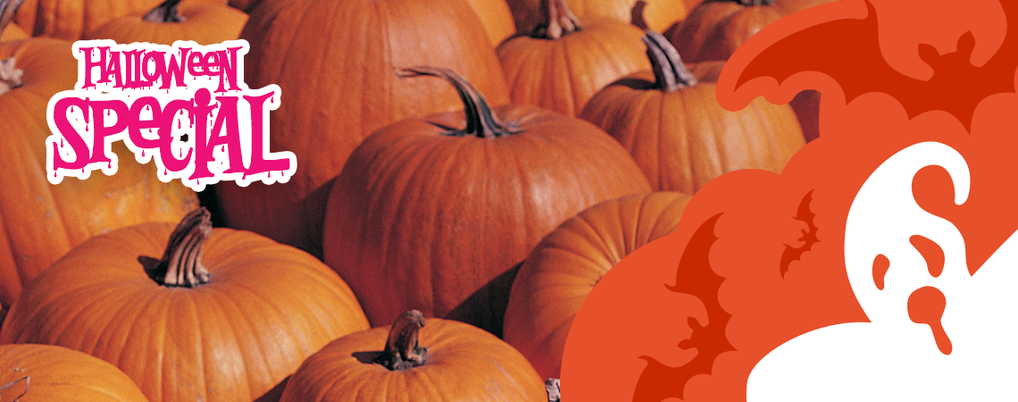 blog-post-header-pumpkin_v1