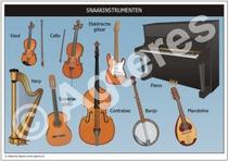 Snaarinstrumenten XL