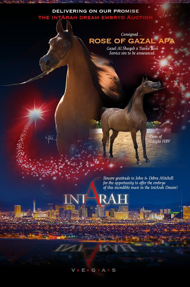 IntArah Dream ... Rose Of Gazal APA