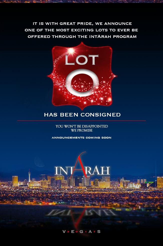 IntArah Dream ... Lot 0 ... You Won't Be Disappointed!