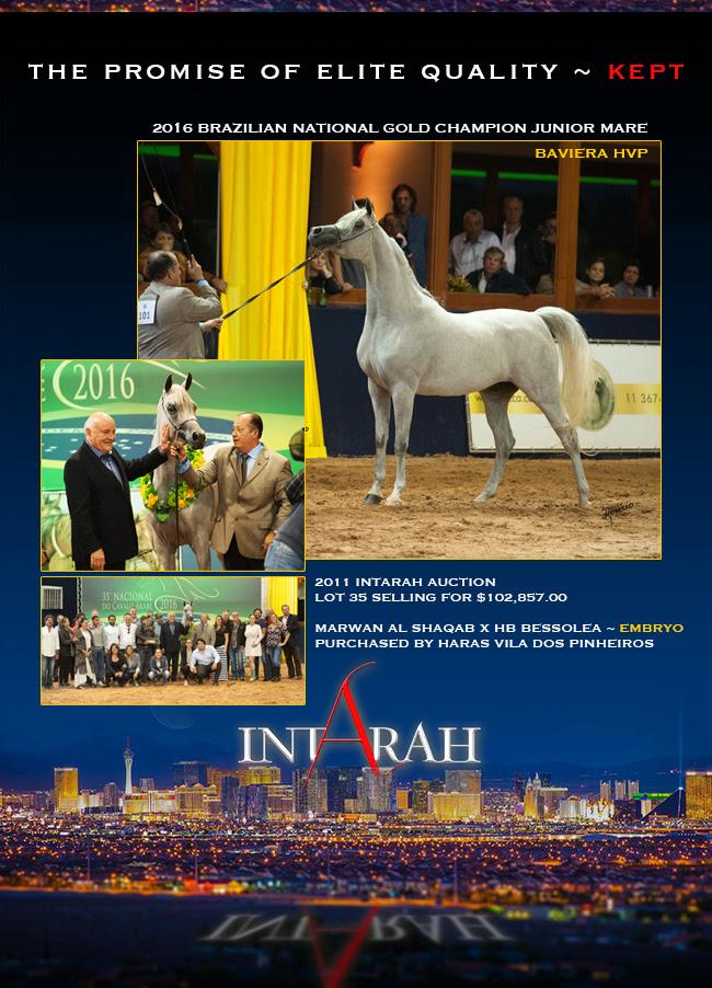 IntArah Dream ... Results