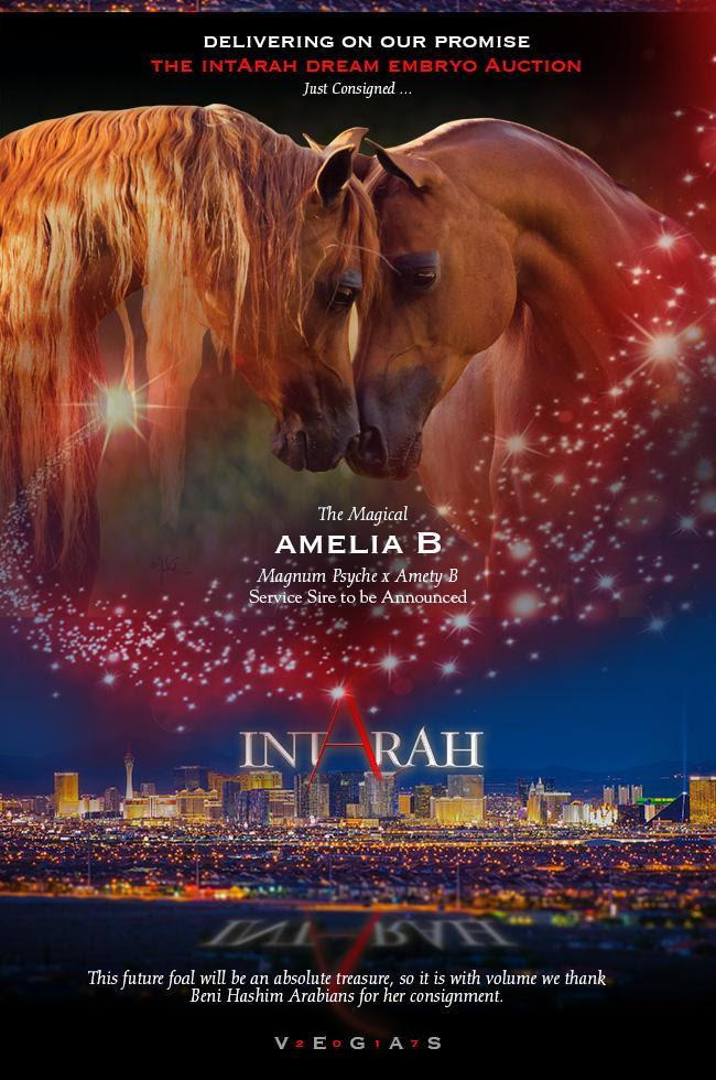 IntArah Dream ... Amelia B