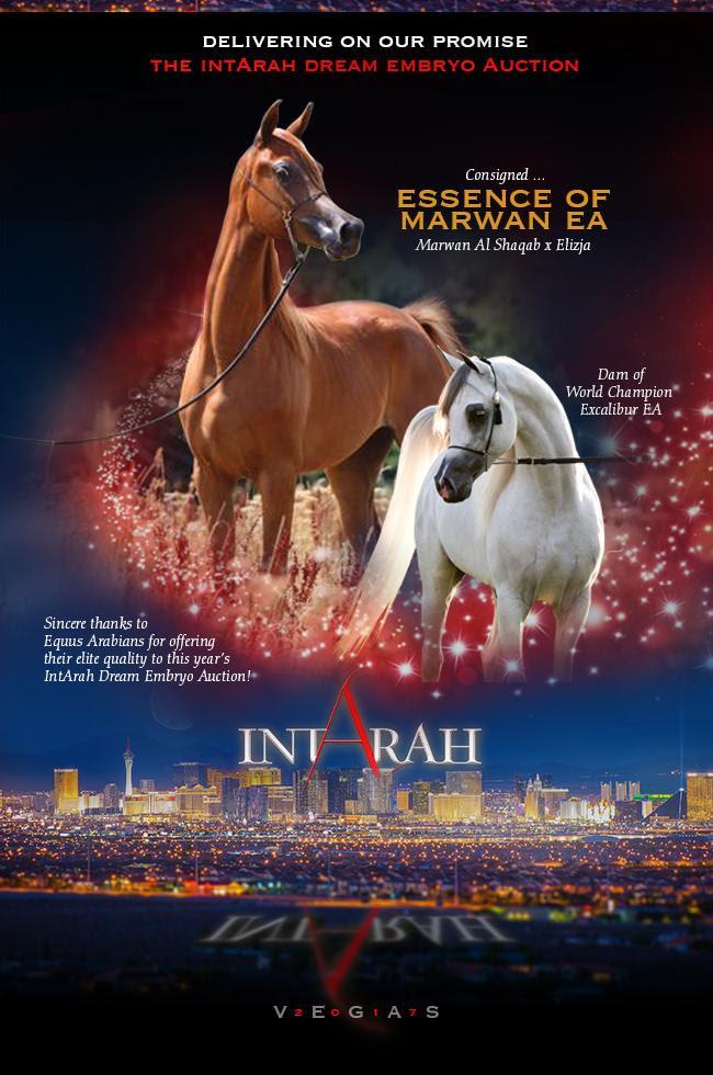 IntArah Dream ... Essence Of Marwan EA