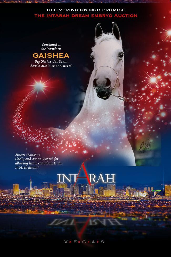 IntArah Dream ... Gaishea