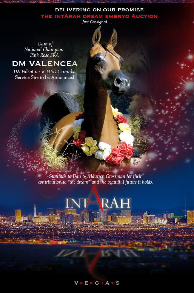 IntArah Dream ... Valencea