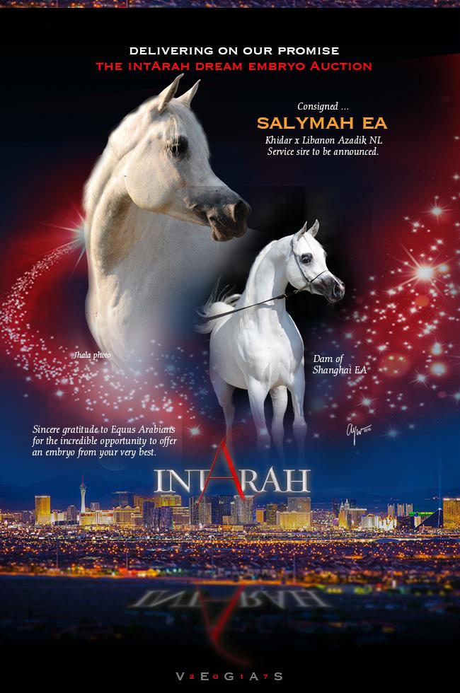 IntArah Dream ... Salymah EA