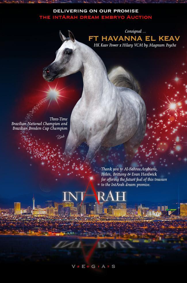 IntArah Dream ... FT Havanna El Keav